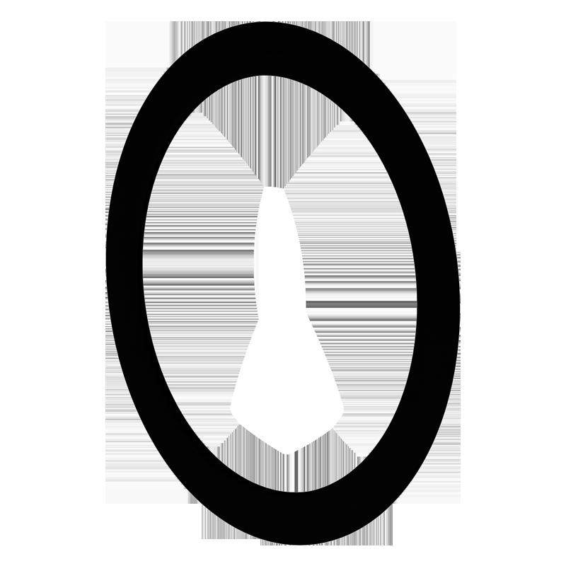 Sealing ring BlauFast RL